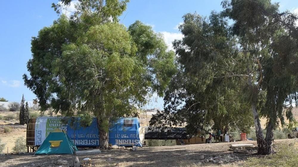 מבנה מאולתר עפ ציוד בין העצים